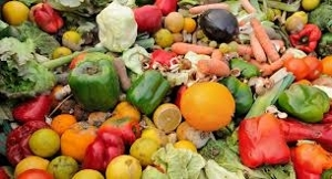 """thumbnails """"Out of the Box"""" A Dutch Approach to Tackling Food and Organic Waste"""